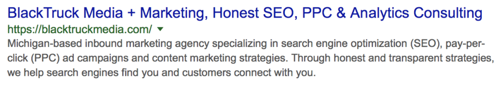 This is how BlackTruck's home page meta description displays on Google's snippet for a branded search.