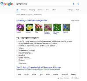 Google Featured Snippet Refinement Bubbles Screenshot